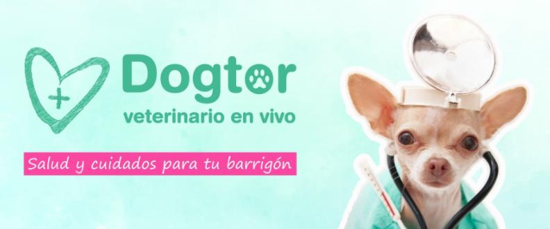 Barrigones.dog Descuentos